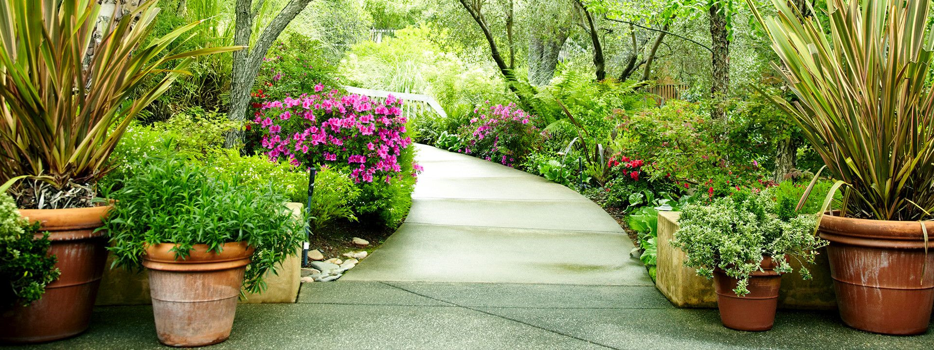 About Us | Serenity Gardens