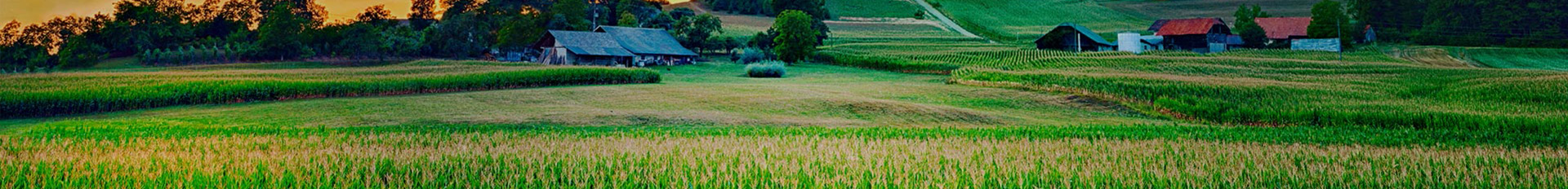 Resources | Knapp-Johnson-Harris Funeral Home