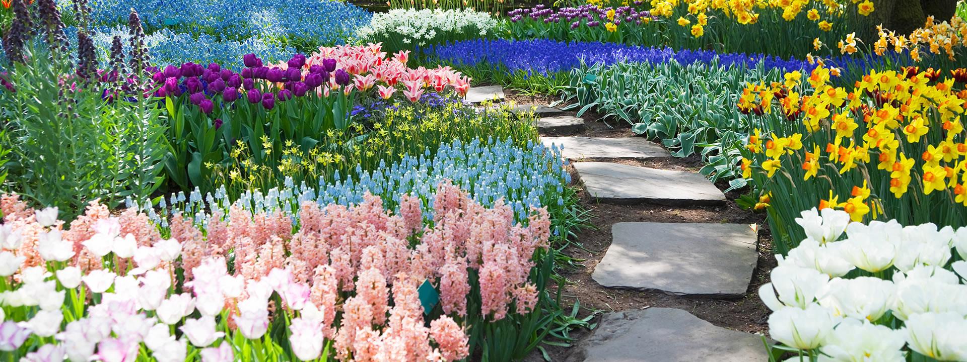 Grief & Healing | Woodridge Memorial Park