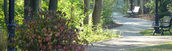 Grief & Healing | Beidelman-Kunsch Funeral Homes & Crematory