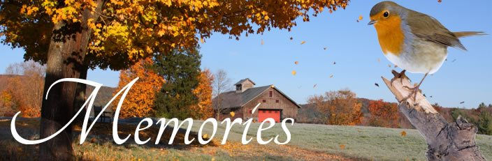 About Us   Schoonover-Stemple Funeral Homes