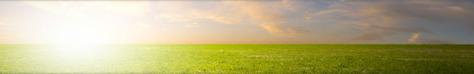Contact Us | Lee Funeral Home