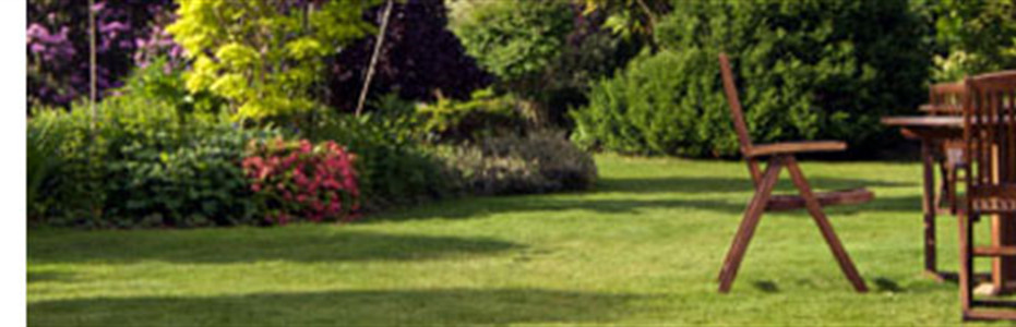 Obituaries | Clay-Barnette Funeral Home