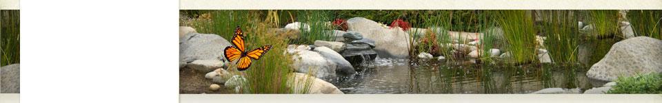 Resources | Santa Cruz Memorial