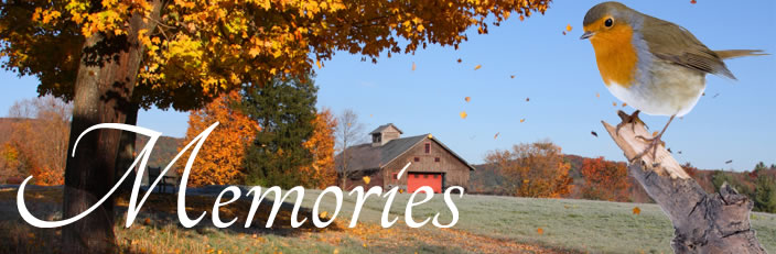 Grief & Healing | Deerfoot Memorial Funeral Home