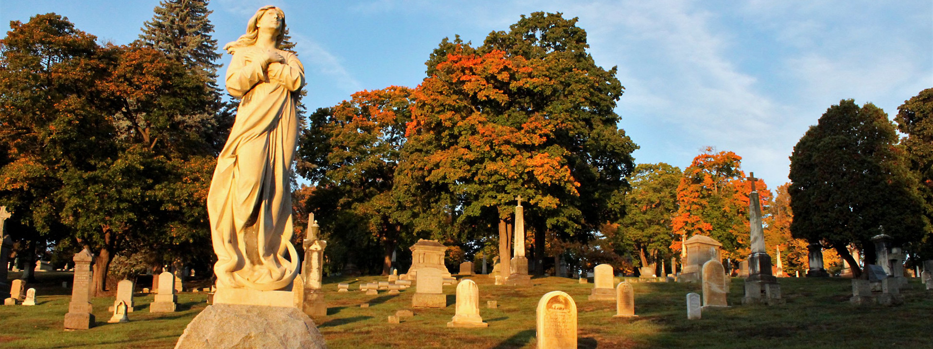 Contact Us | Albany Diocesan Cemeteries