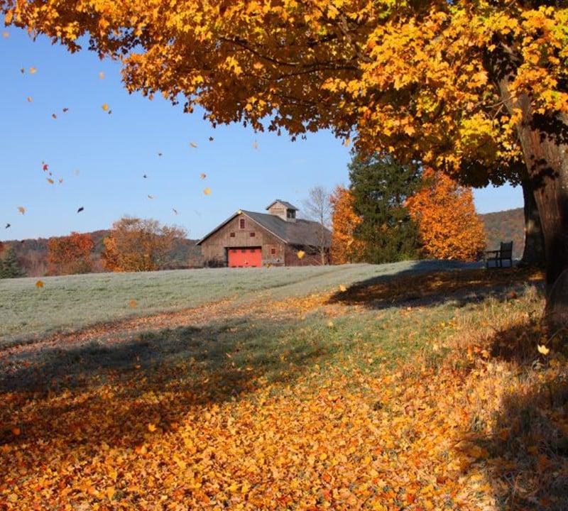 Funeral Home Near Elkwood, VA