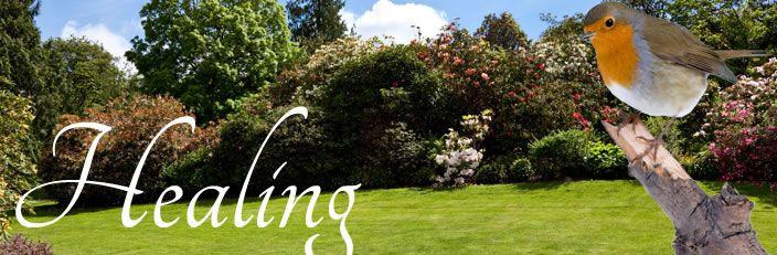 Grief & Healing | Salser & Dillard Funeral Chapel