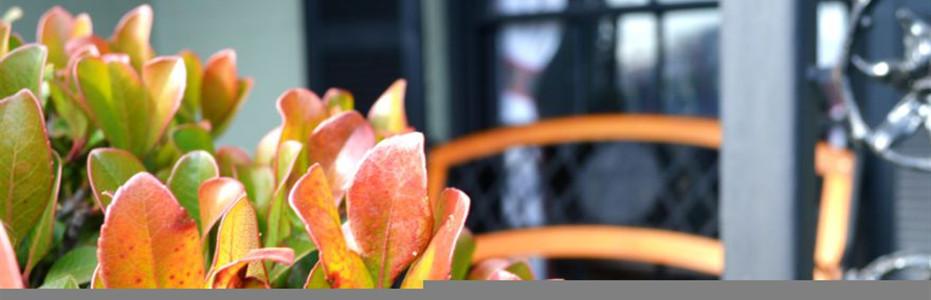 Grief & Healing | Guerrero - Dean Funeral Home
