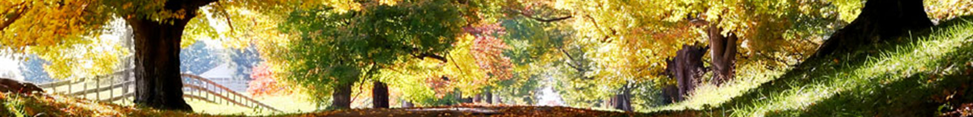 Plan Ahead | Ziemer Funeral Homes