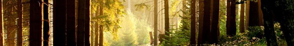 Resources | Spengel-Boulanger Funeral Home & Dauderman Mortuary