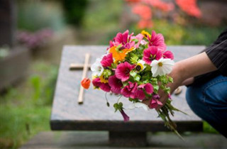 Burial Services in fort collins