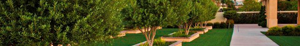 Our Facilities | Tradition Cemetery 562 S. 'I' Street San Bernardino, CA 92410