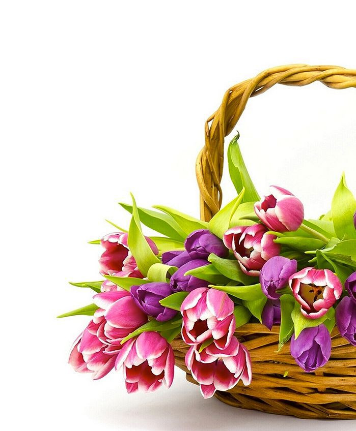 Basket of Flowers and Gifts Ideas Appropriate for Funeral Services