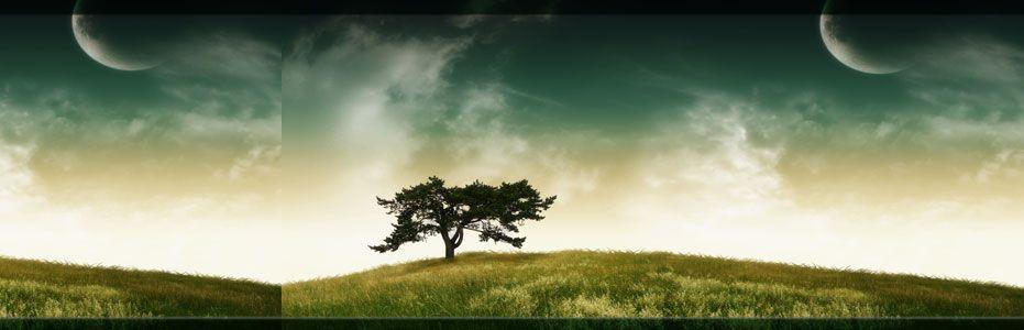 Grief & Healing | Firdous Funeral Home
