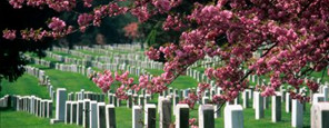 Funeral Services in San Mateo CA