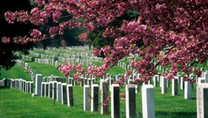 Funeral Services in Dublin CA