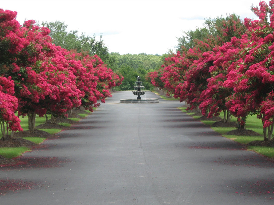 Tour Our Grounds