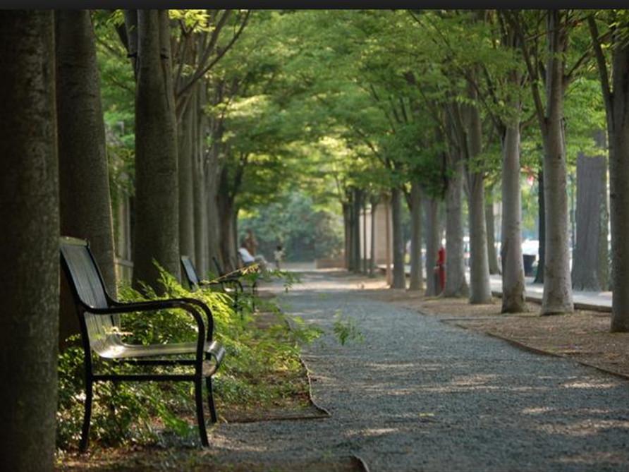 Princeton Township, NJ