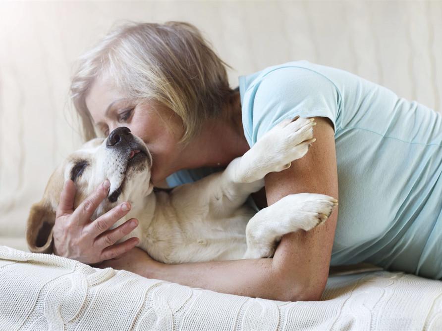 Create A Pet Tribute