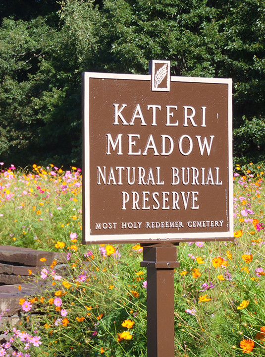 What is natural burial?