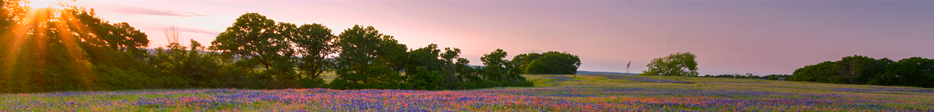 Grief & Healing | Denton Funeral Home and Cremation Services