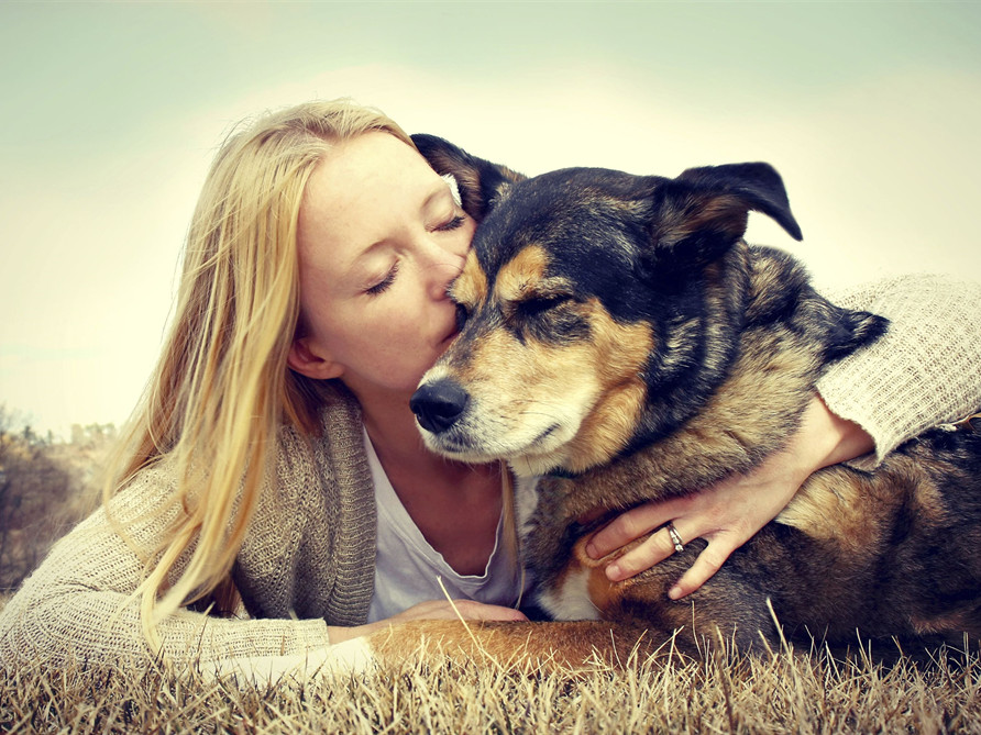 Onsite Cremation - Helping You Remember Your Cherished Pet