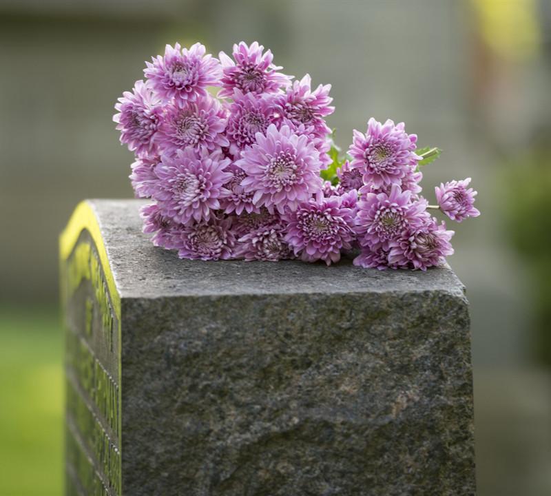 Memorial Options