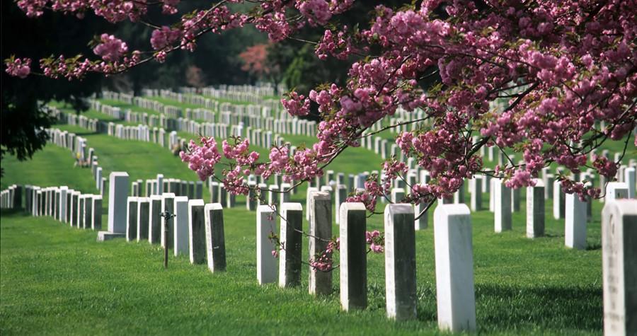 Veteran Burial Honors