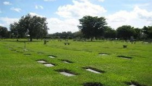 Cemetery Options