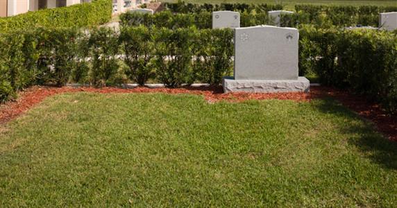 Beth David Memorial Gardens