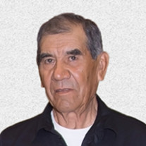 Mr. Rogelio Sandate Muro