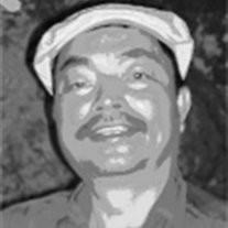 Mr. Toan  Tran