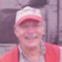 Mr. Robert L. Amico