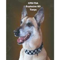 Chicago Police Department/TSA Canine Tanya