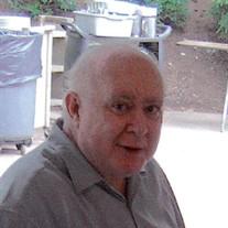 Mr.  Robert Lee Hurst