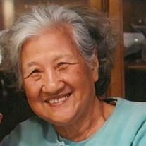 Diying Zhu