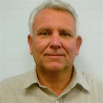 David R. Stein