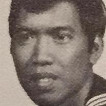 Domingo A. Peralta