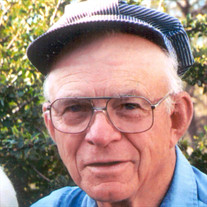 Mr. Richard John Knipp