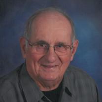 Lyle P Johnson