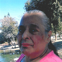 Mary Guadalupe Jimenez