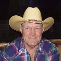 Dale L. Anderson
