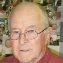 Mr. Ralph Elwin Skelton