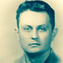 Milan R. Uskokovic Ph.D.