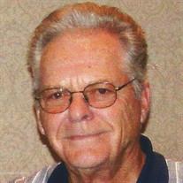 Mr. Renzy Stewart