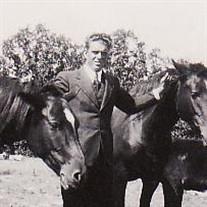 Homer Leo Gann