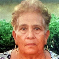 Maria Delfina Blanco-Amezcua