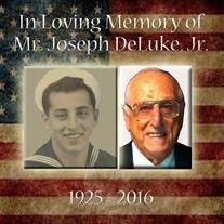 Mr.  Joseph DeLuke