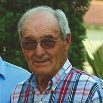 John W. Fortson Jr.